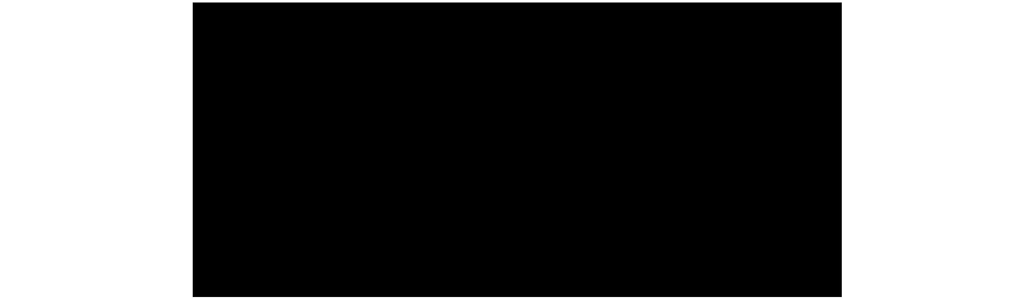 Het Beleg